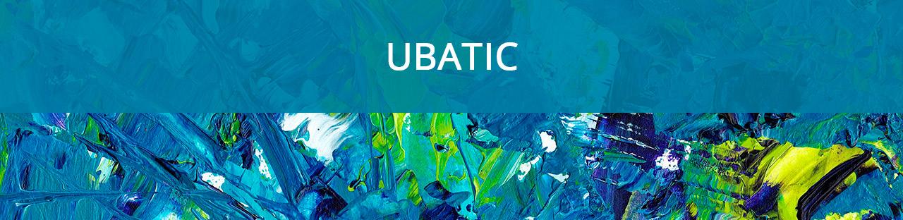 banner-programaubatic